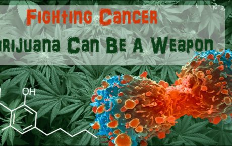 Fighting Cancer, Marijuana Can Be A Weapon